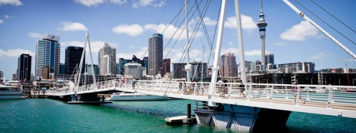 10 Best Things To Do In Auckland