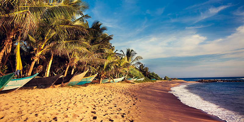 14 Best Things To Do In Colombo | Mirissa Beach