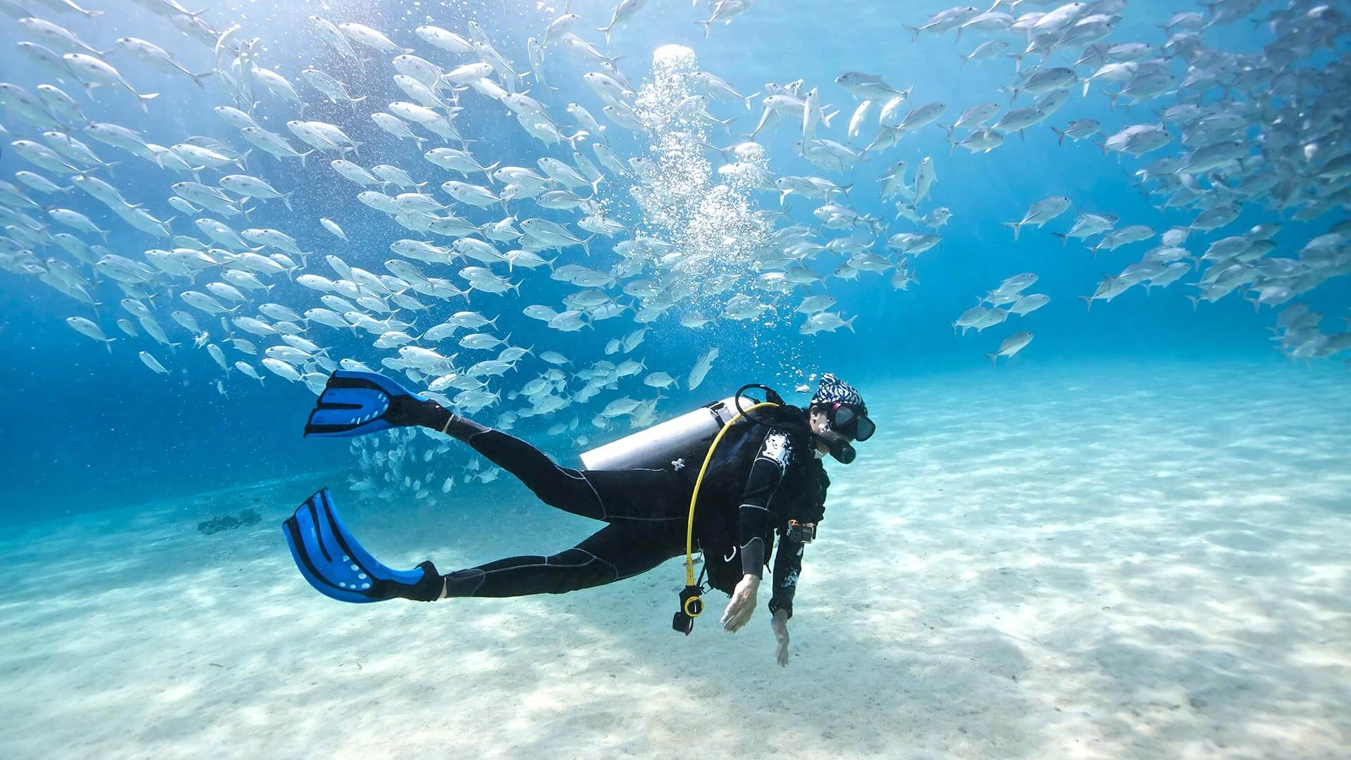 16 Best Things To Do In Phuket, Thailand / Scuba Diving