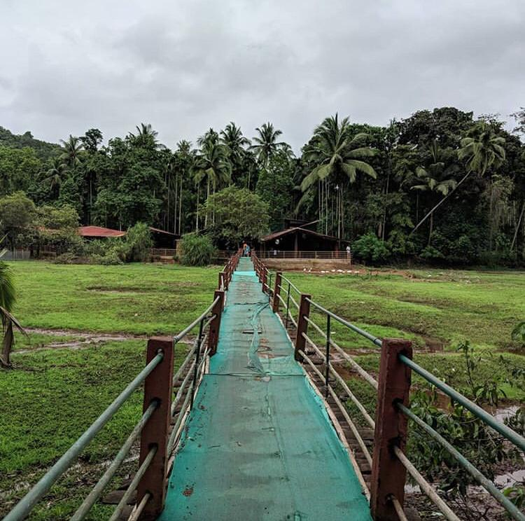 Reasons To Visit Spice Plantation In Goa