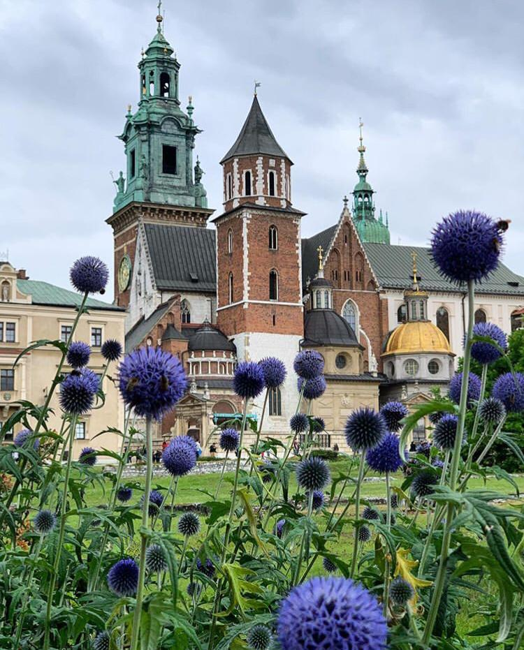 Wawel Royal Castle / Top 9 Reasons To Visit Krakow, Poland