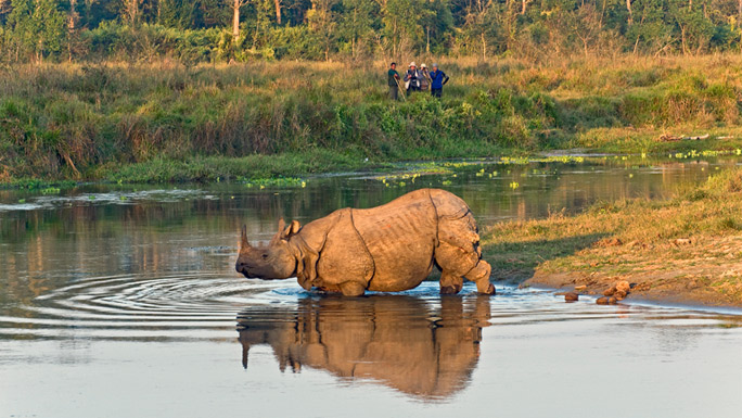 13 Best Places To Visit In Nepal / Chitwan National Park