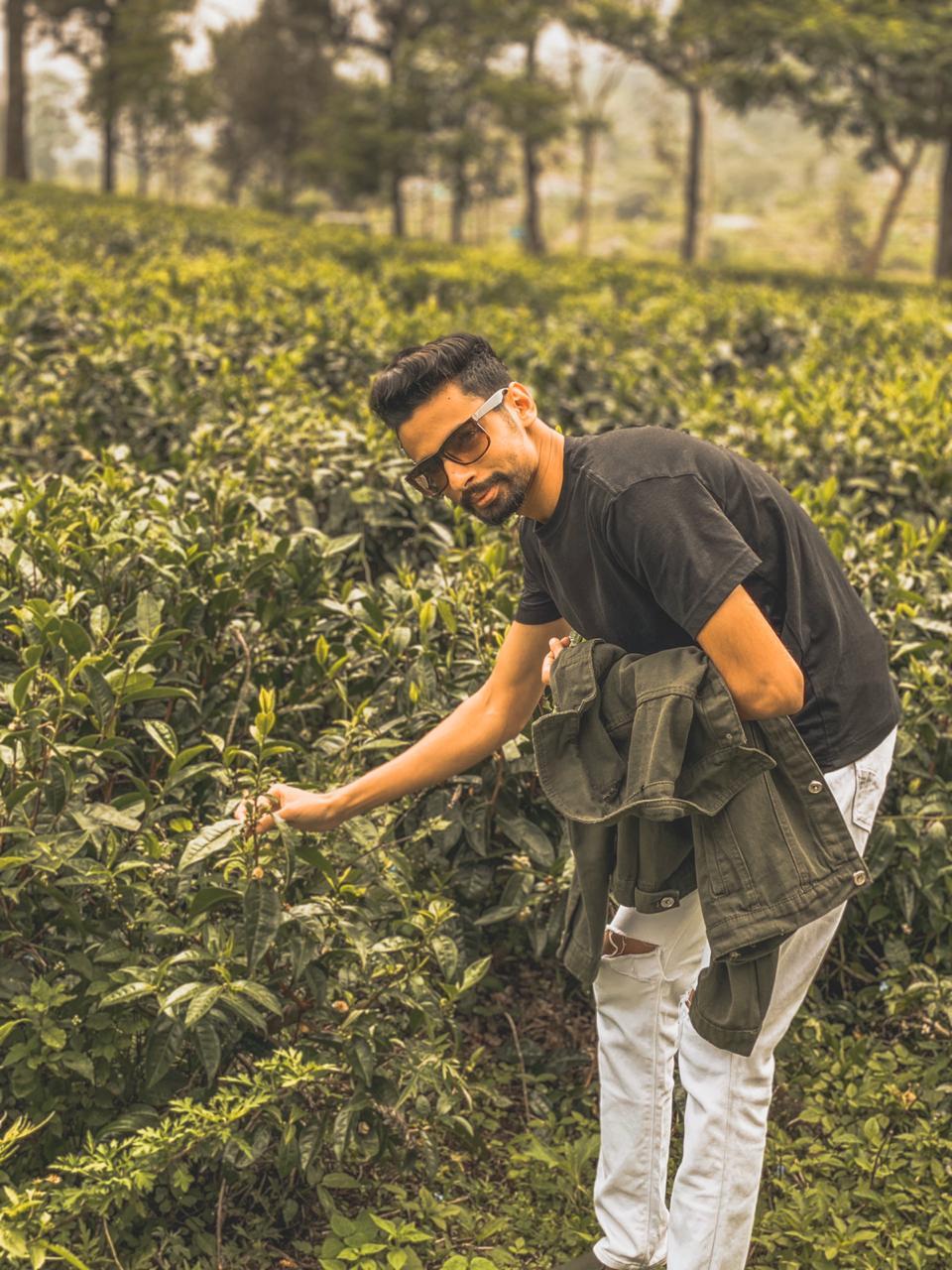 TSG's Top Best Places To Visit In Srilanka / Nuwara Eliya - Tea Plantations