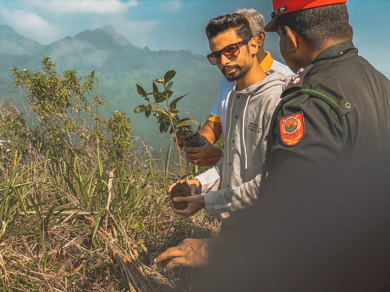 Tree Plantation Program