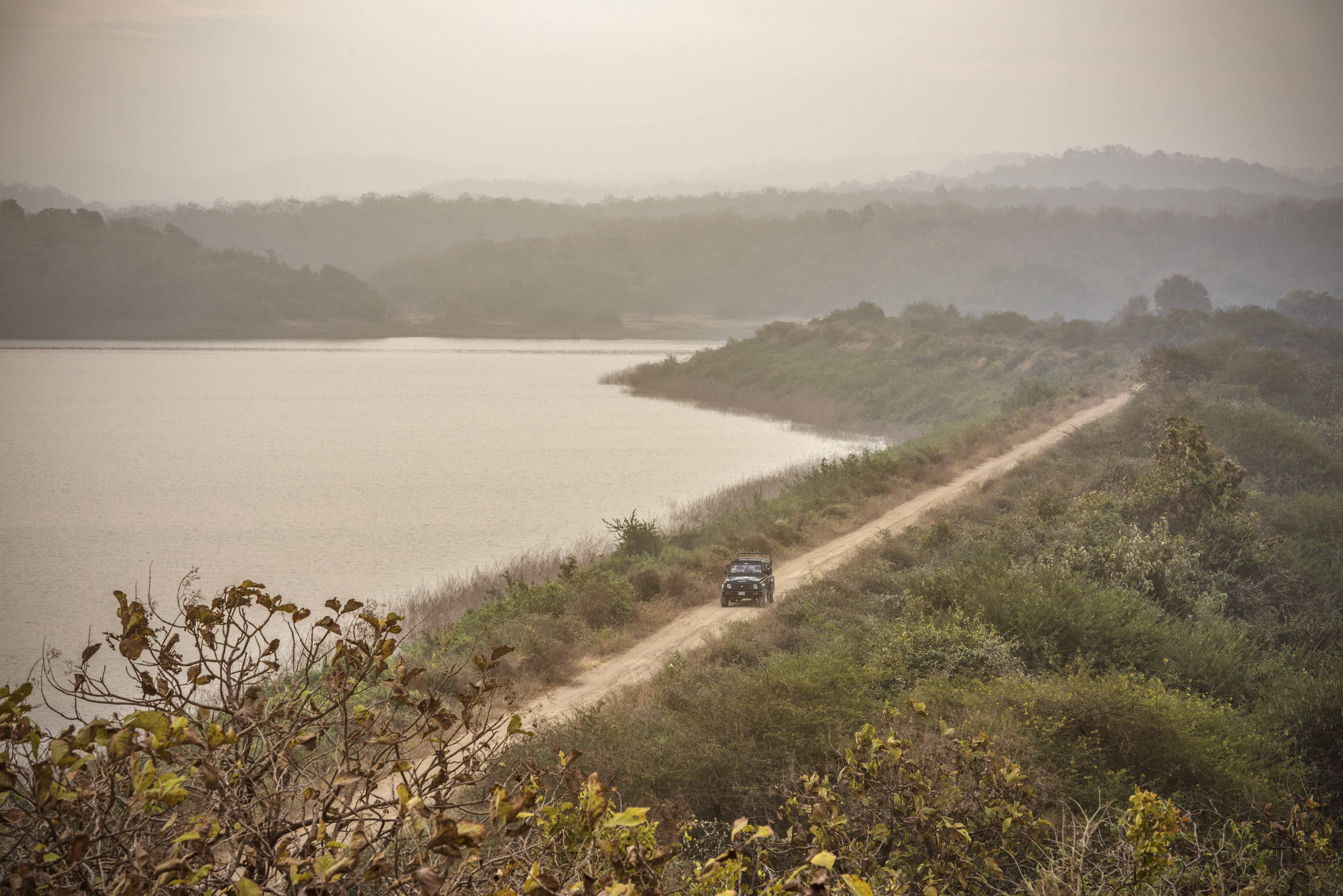 11 Best Places To Visit In Gujarat / Gir National Park