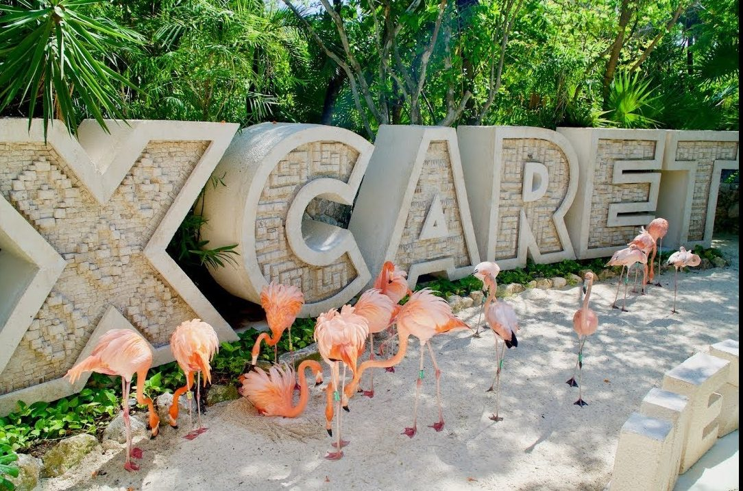 Best Things To Do In Cancun / Xcaret Park