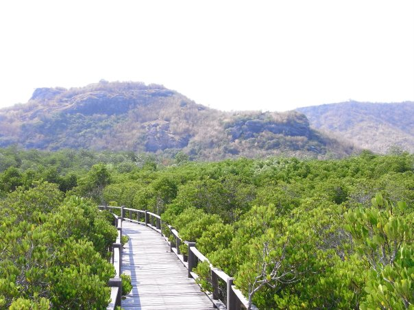 Pranburi Forest Park / Best Things To Do In Hua Hin
