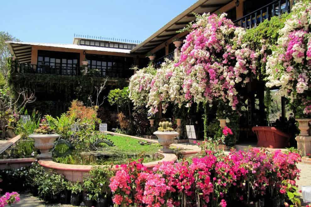 Botanical Garden / Things To Do In Puerto Vallarta