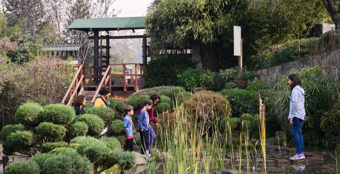 Vina del Mar Botanical Garden / Things To Do In Valparaiso